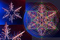 Snowflake proportions (1).jpg