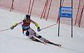 Sochi WJSC 2016.jpg