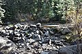 South Boulder Creek 02.jpg