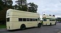 Southern Vectis 703 and 602 rears.JPG