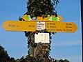 St-Prex-Lausanne-Ouchy (12.12.12) 174 (8435004895).jpg