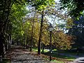 StadtPark, Graz (Estiria) (4290963777).jpg