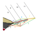 Standing rigging of bowsprit.png
