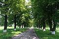 Stara Pryluka park SAM 1362.JPG