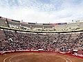 Starting bullfight.jpg