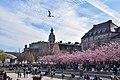 Stockholm - Kungsträdgården - April 2019 03.jpg