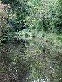 Stratford-upon-Avon Canal near Illshaw Heath, Solihull - geograph.org.uk - 1716616.jpg
