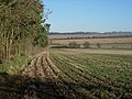 Stubble field - geograph.org.uk - 1083456.jpg