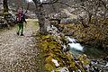 Subida al cornión por Lagos de Covadonga.jpg