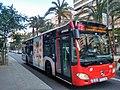 Subus Alicante.jpg