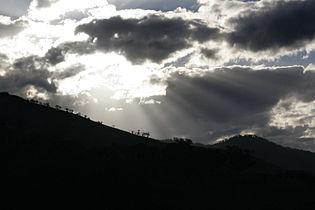 Sunbeams.jpg