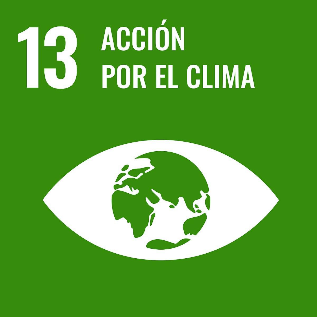Objetivo de Desarrollo Sostenible 13 - Wikipedia, la enciclopedia libre