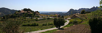 Suzette, Vaucluse - View of Suzette with vineyards
