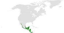 Tachycineta albilinea distribution map.png