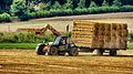 Taking the straw bales back to the farm (9481272522).jpg
