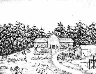 Tallahassee Railroad - Drawing of the Tallahassee railroad depot, by Francis Count de Castelnau