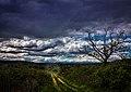 Tarde de nubes en Calamocos (51149642472).jpg