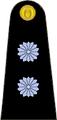 Teniente Primero Arg.png