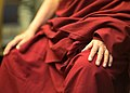 Tenzin Gyatso - 14th Dalai Lama (14580118292).jpg