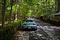 Tesla Roadster in Karuizawa, Japan (14172519780).jpg