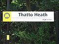 Thatto Heath railway station (1).JPG