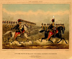 10th Royal Hussars - The 10th (The Prince of Wales's Own) Royal Regiment of Hussars, 1860s