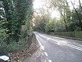The A32 heading towards Corhampton - geograph.org.uk - 1582189.jpg