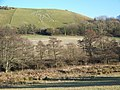 The Cerne Abbas Giant - geograph.org.uk - 1093460.jpg