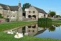 The Duck Pond, Hartington, Derbyshire. - geograph.org.uk - 110435.jpg