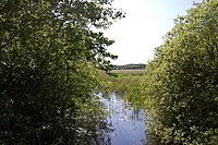 The Fens from Sheepwash Crossing - geograph.org.uk - 1353036.jpg