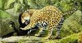 The Larger Mammals of North America - Jaguar & Currasow.png