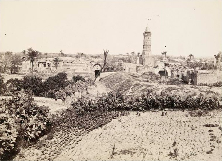 The Old Town, Gaza (1862-1863)