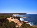 The Royal National Park Coast Track - panoramio (3).jpg