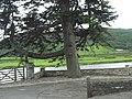 The tidal Afon Dwyryd - geograph.org.uk - 489364.jpg