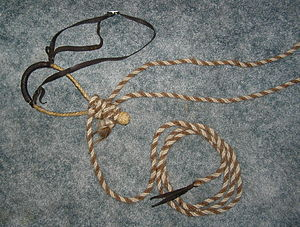 Bosal - A lightweight bosal made of rawhide, nose button is dark brown leather, horsehair mecate tied just in front of heel knot. Thin leather headstall, no fiador
