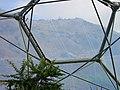 Through the roof - geograph.org.uk - 65575.jpg