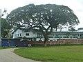 TnT San Fernando ASJA Boys' College.jpg