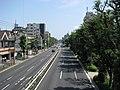 Tokyo Route 311 -11.jpg