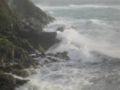 TomCorser Wild sea IMG 5970.JPG