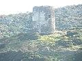 Torre Cala d'Oliva Asinara.jpg