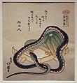 Totoya hokkei, angurie e serpente, 1822, ukiyo-e, 02.JPG