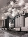 Train in front of a grain elevator in California LCCN2013633283.tif