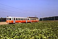 Trains Lausanne Echallens Bercher (Suisse) (5435212565).jpg