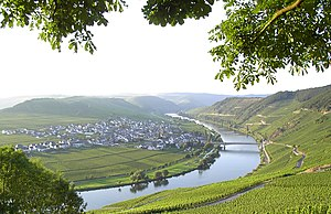 Trittenheim - View of the bend in the Moselle from Trittenheim