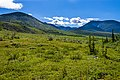 Tundra and mountains near Wolf Creek confluence with Firth River, Ivvavik National Park, YT.jpg