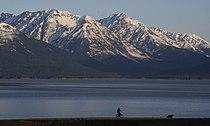 Turnagain Arm and Kenai Mountains (1).jpg