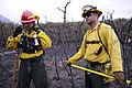 USAFA Waldo Canyon Fire Image 7 of 23.jpg