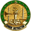US Army Senior Instructor ID Badge.png
