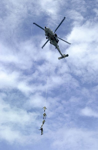 File:US Navy 031005-N-2385R-004 Explosive Ordnance Disposal Mobile Unit Eleven Detachment One (EODMU-11, DET 1) suspend themselves from a repelling rope.jpg