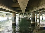 Under the Sundale Bridge, Southport, Queensland 01.jpg